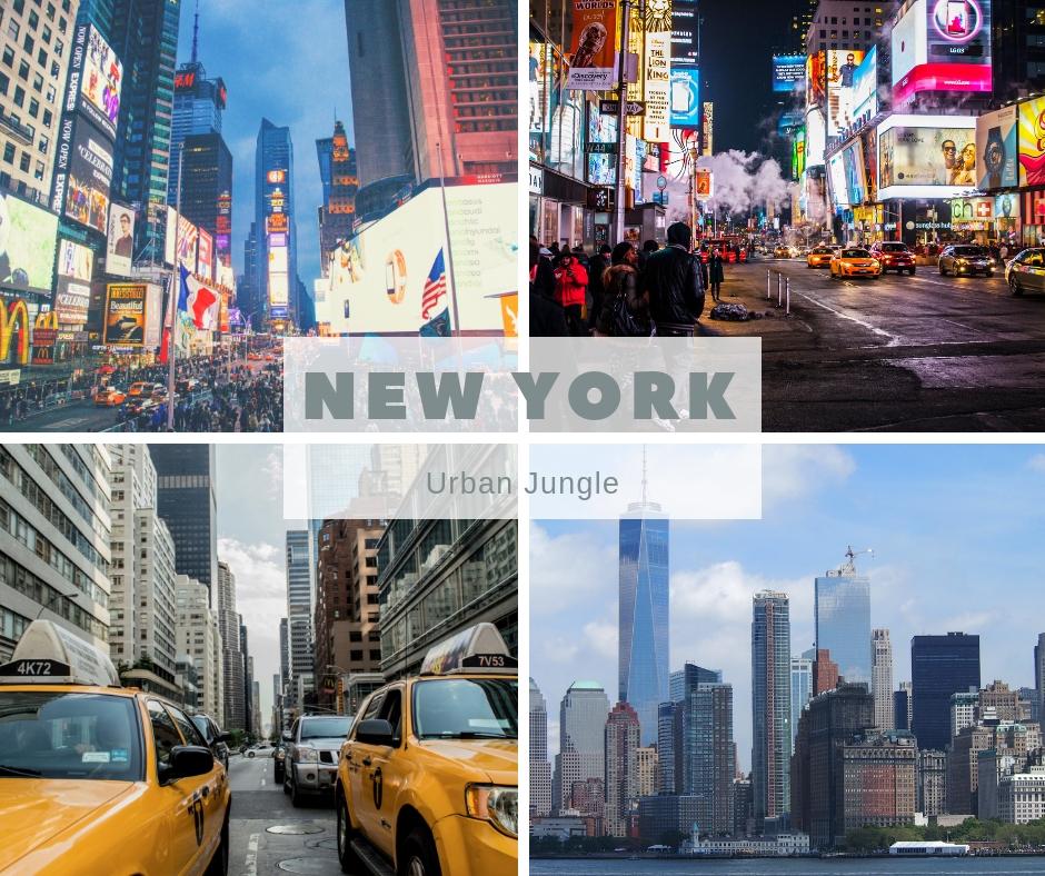 New York as an Urban Jungle